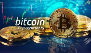 Bitcoin-or-Cryptocurrency